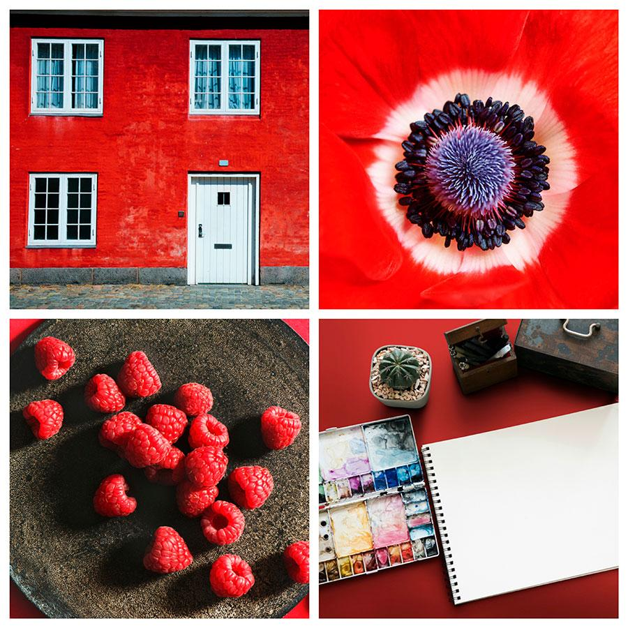 search images by color red