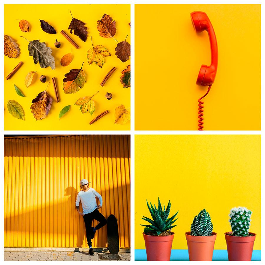 search images by color yellow