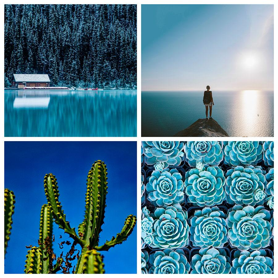 search photos by color blue