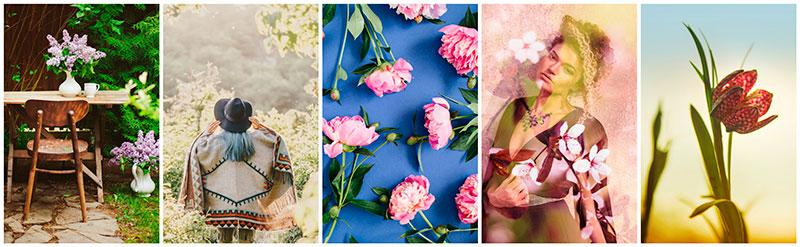 spring time images stock photography