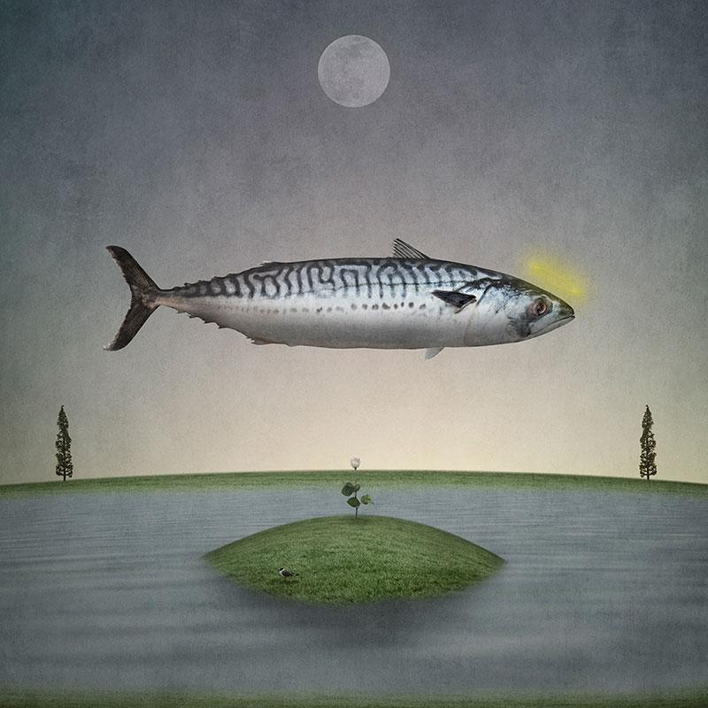 Gregory Noblin art   Holy+Mackerel