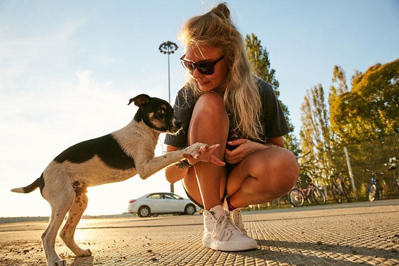 Evgeny Lobanov photography - girl with a stray dog