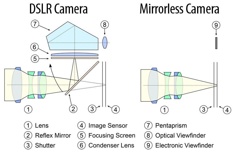 DSLR-Compared-to-Mirrorless-Camera