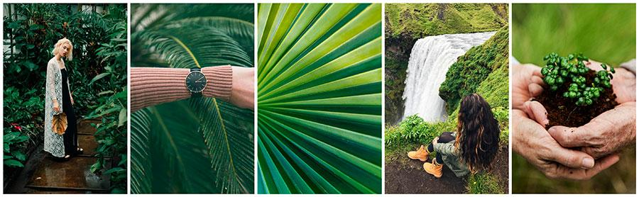 pantones green photo collection
