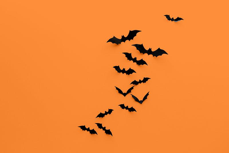 halloweeen background images depositphotos 14