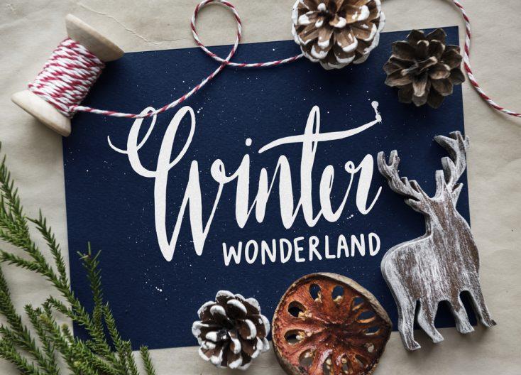 Photo Collection: Winter Wonderland