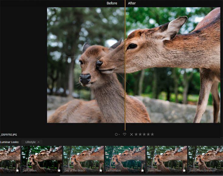 Luminar 3: Edit Your Images at Warp Speed