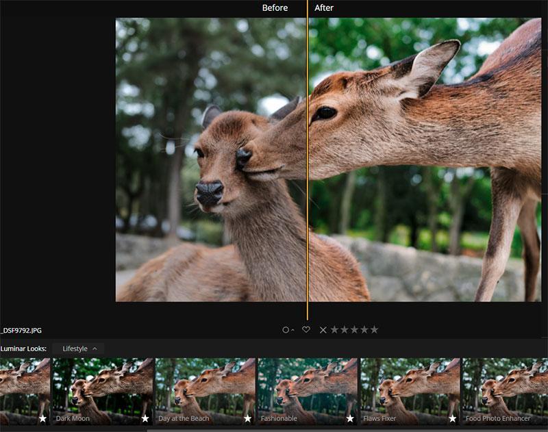 Looks filter   Luminar 3 photo editing software 2