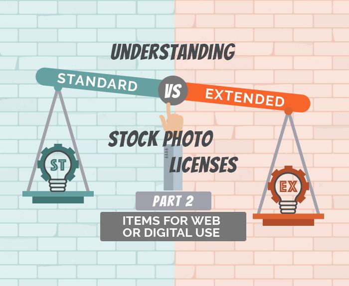 Understanding Standard vs Extended Licenses for Digital Use