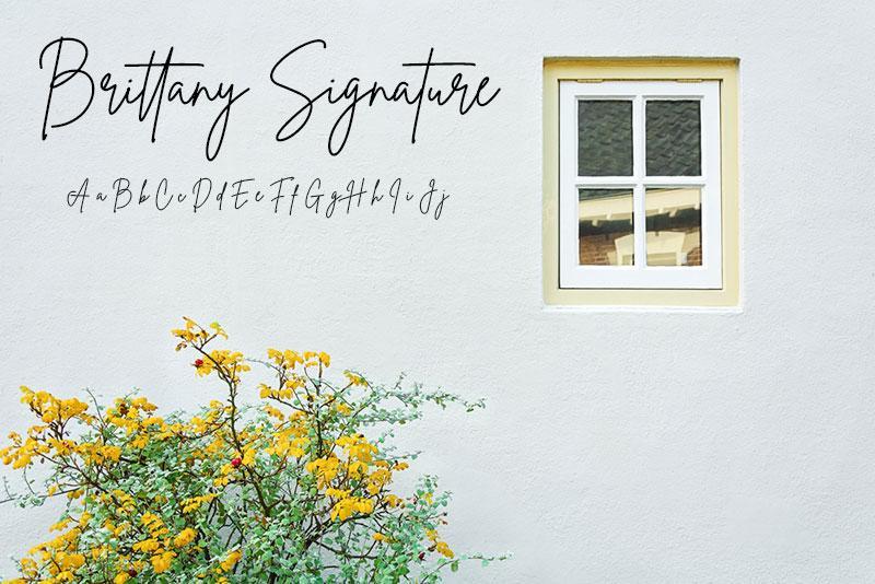 Brittany Signature minimalistic font