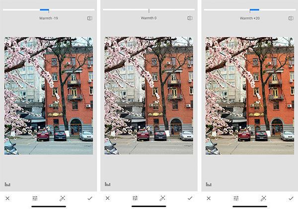 Snapseed Tutorial: Learn the Basics to Better Editing