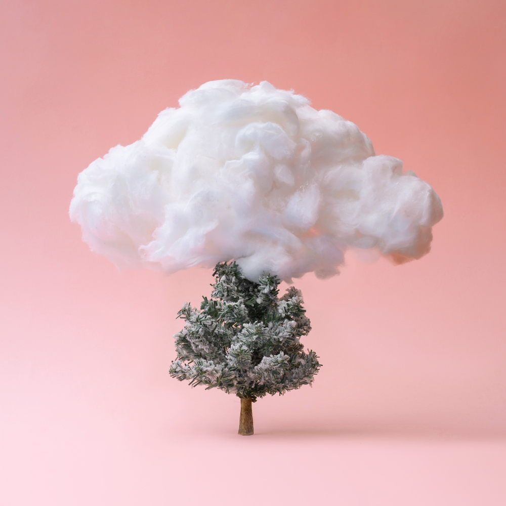 Cloud with Christmas tree