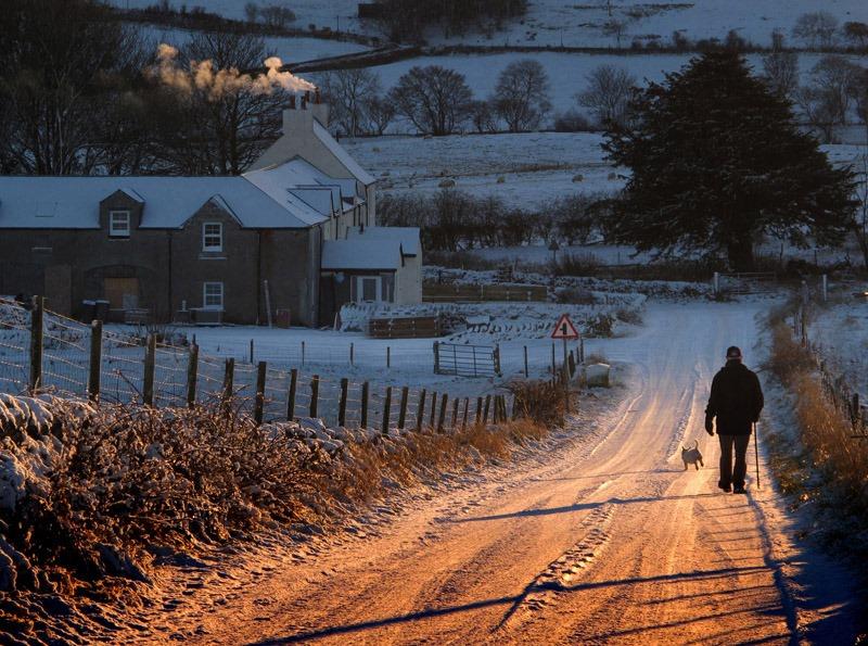lovely winter landscape