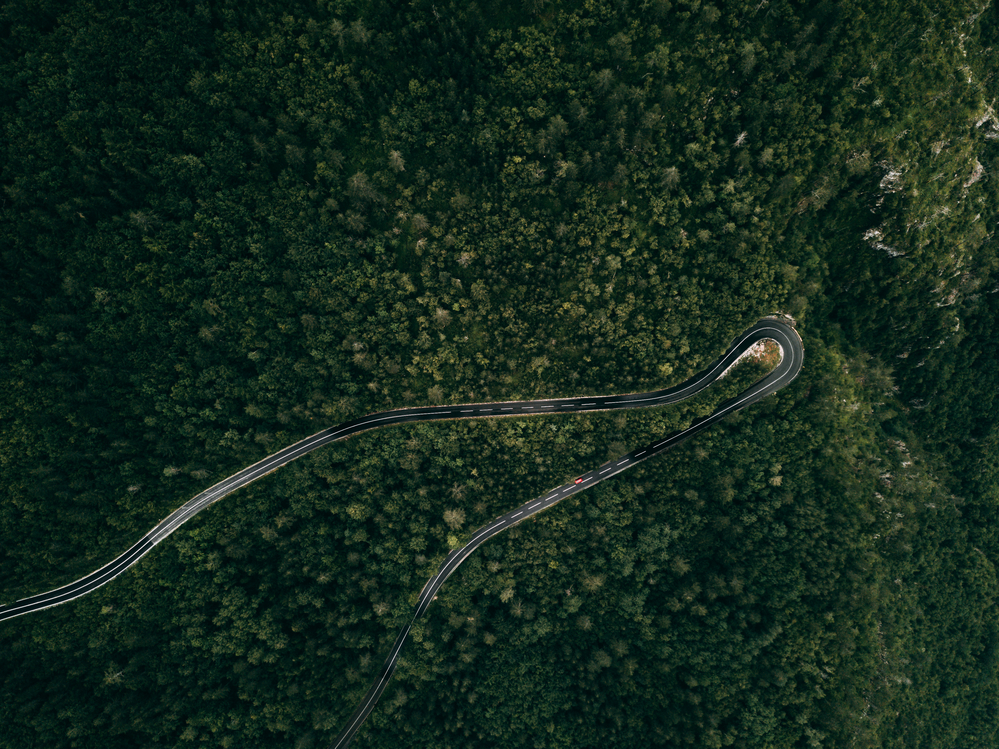 Forest mountain road - aerial view