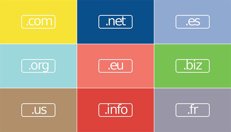 domain name options