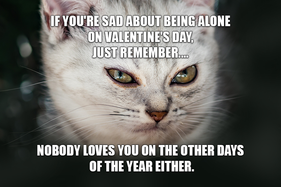 If you're sad about being alone on Valentine's Day, just remember.... Nobody loves you on the other days of the year either.