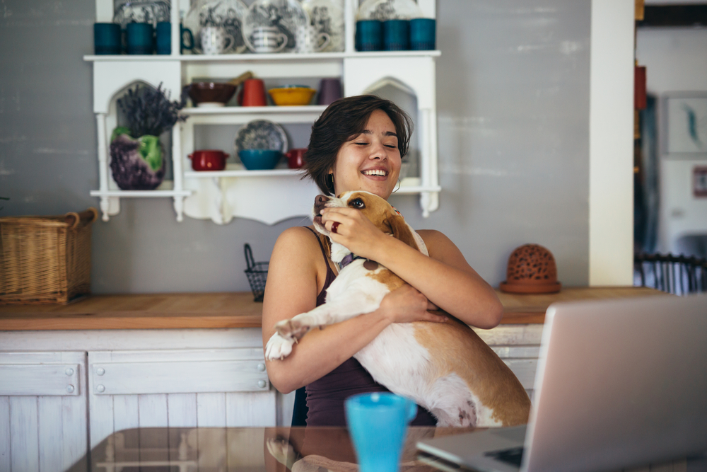 stock photo of woman holding her dog