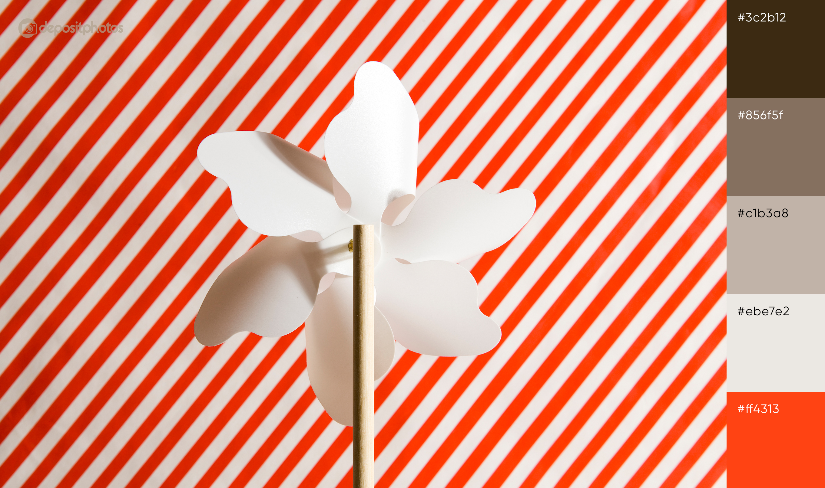 stock image red paper flower concept
