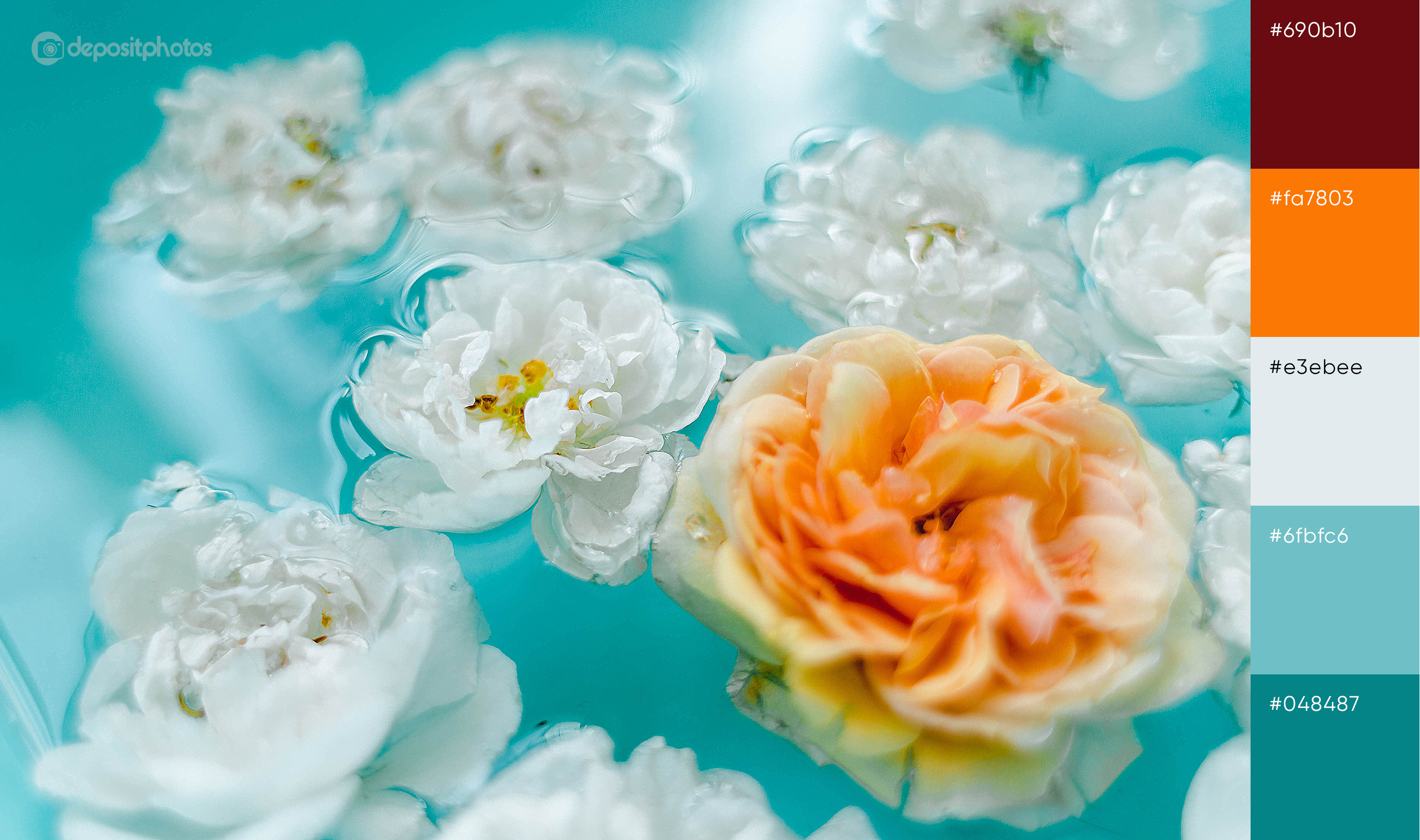 stock image flowers in water