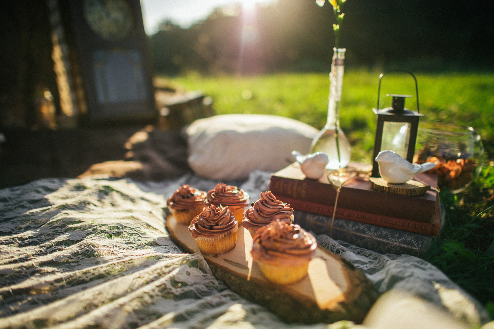 stock photo of picnic on fresh air