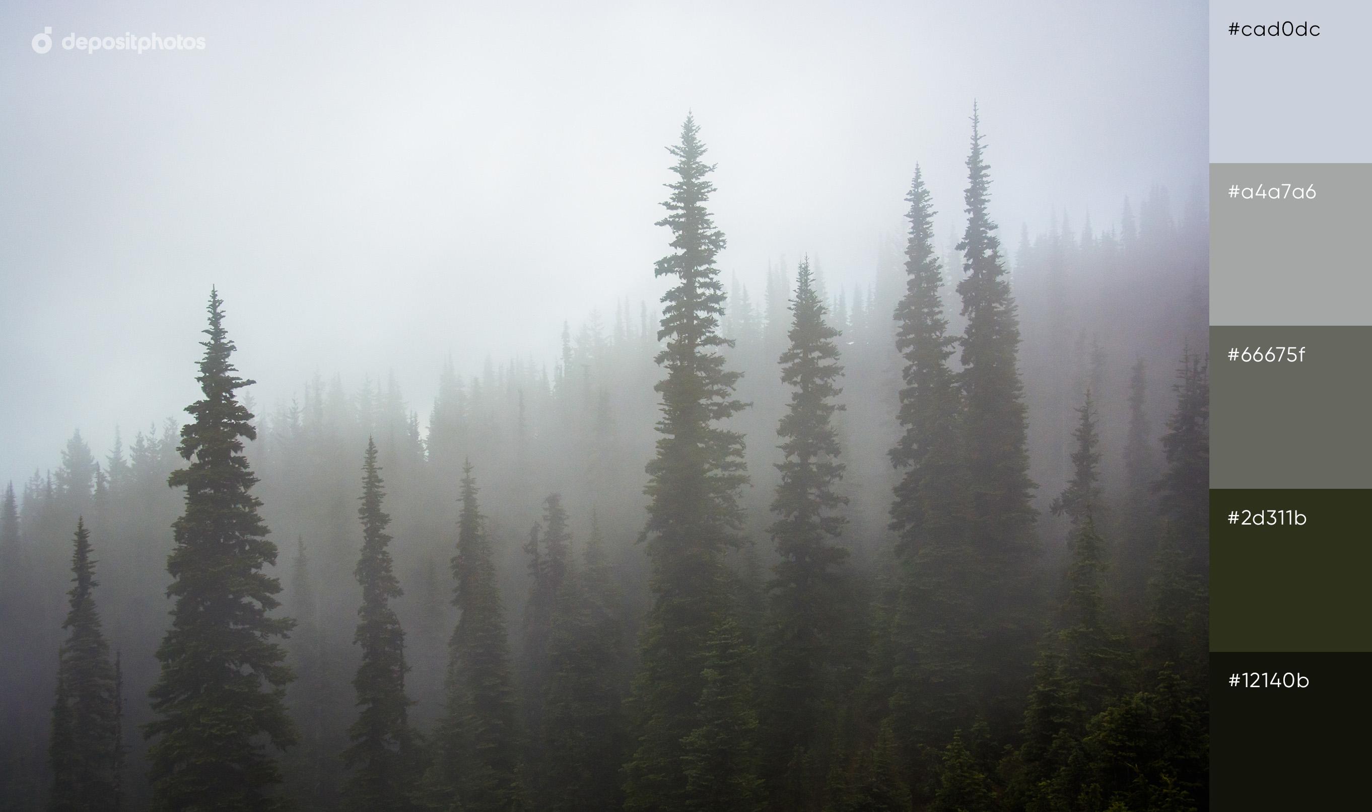 Twin Peaks Color Palette