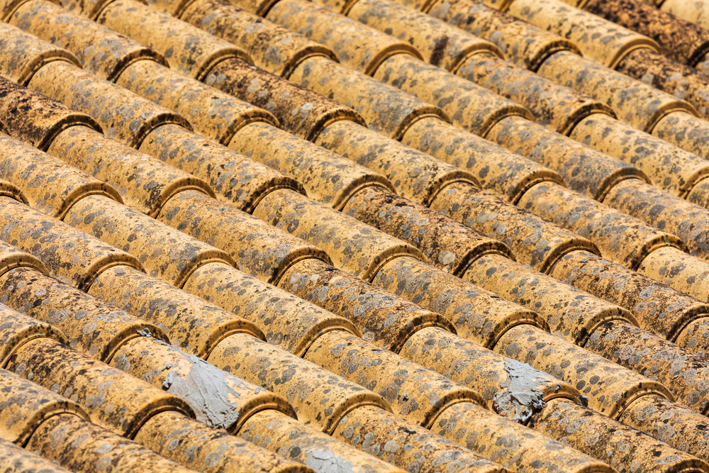 abstract stock photo roof