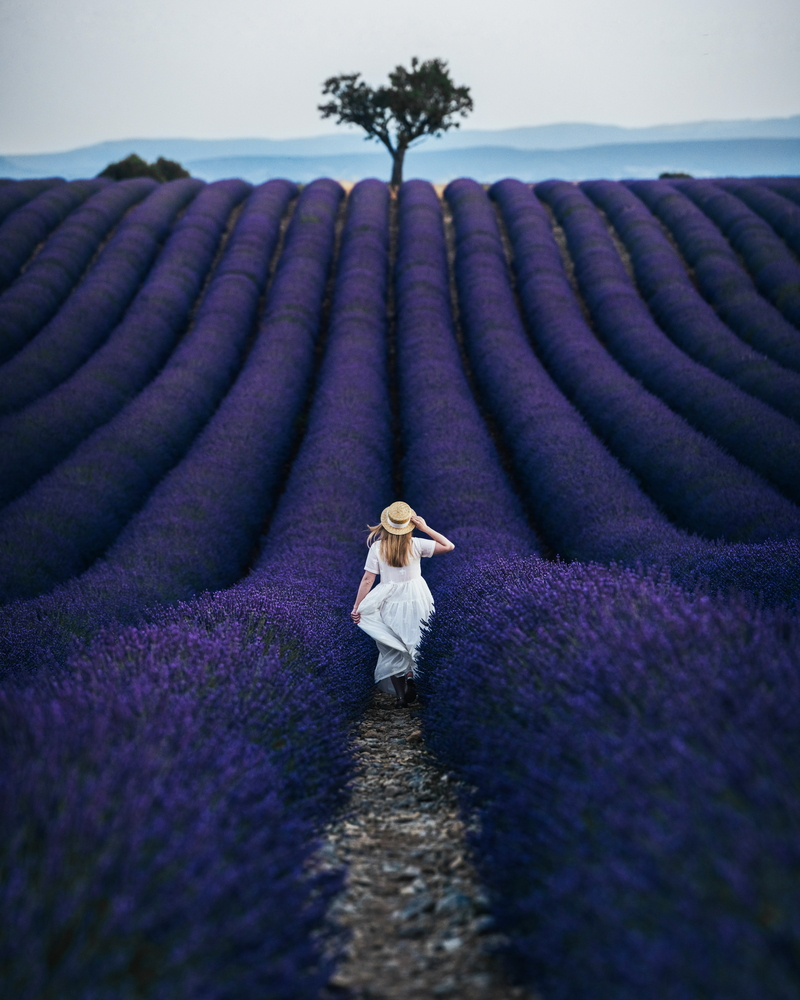 travel photography stock photo girl hat dress violet