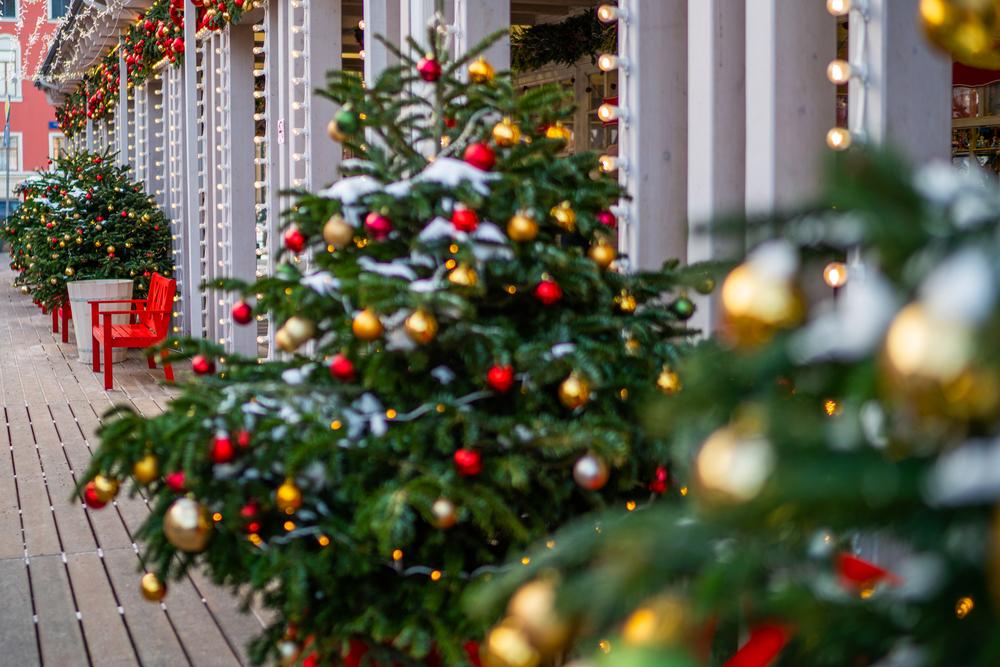 stock photo christmas tree