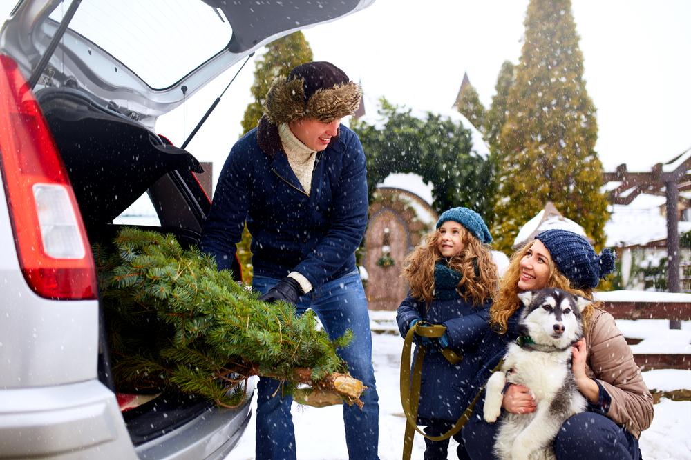 stock photo christmas tree family