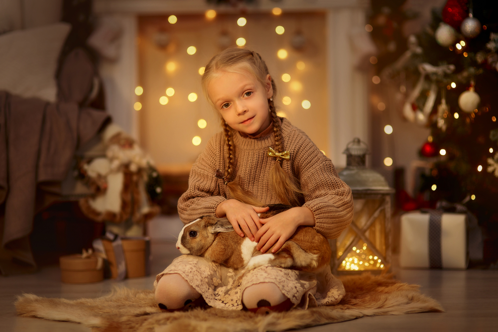 stock photo christmas girl