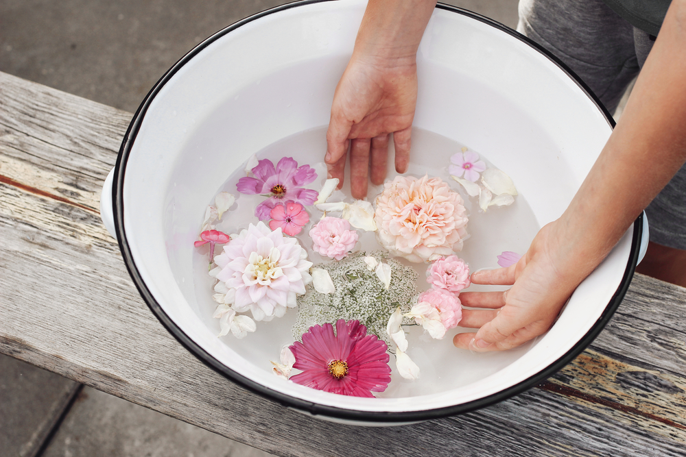stock photo water hands flowers