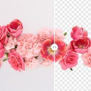 Remove Image Backgrounds In a Click With the Depositphotos Free Tool