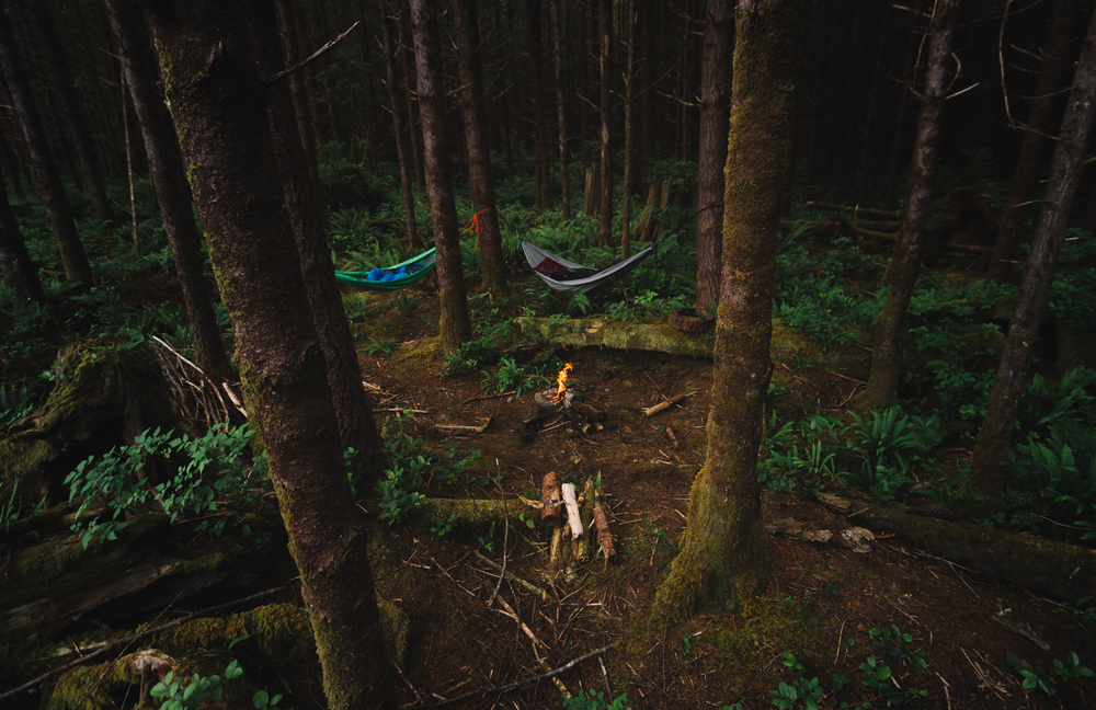 stock photo forest fire camp