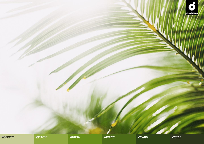 green summer color palettes