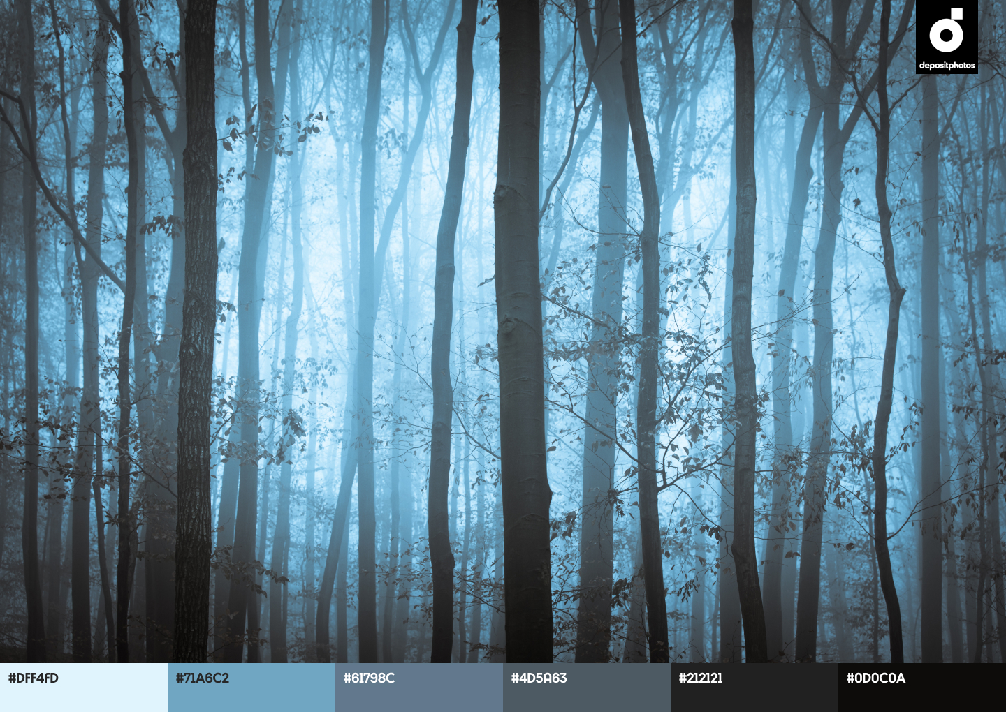Trendy Fall Color Palettes from Depositphotos